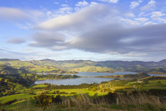 Banks Peninsula Royalty Free Stock Image