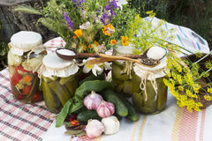 Banks with pickled vegetables - cucumbers, tomatoes, zucchini, a Royalty Free Stock Photos