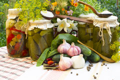Banks with pickled vegetables - cucumbers, tomatoes, zucchini, a Royalty Free Stock Images
