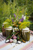 Banks with pickled vegetables - cucumbers, tomatoes, zucchini, a Stock Photos