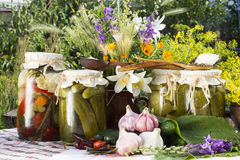 Banks with pickled vegetables - cucumbers, tomatoes, zucchini, a Royalty Free Stock Photography