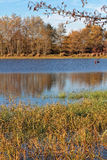 Banks of a pool in La Dombes at fall Stock Photo