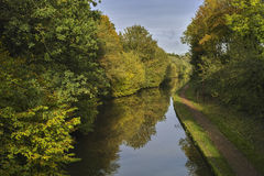 River. The banks of a river, with bushes and trees Royalty Free Stock Images