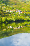 Banks of the River Douro Stock Images