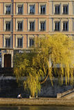 Banks of Saone river Royalty Free Stock Image