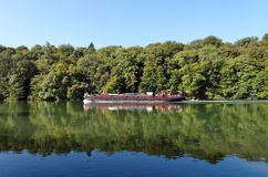 Banks of seine river in Fontainebleau forest Stock Photography
