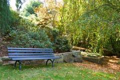 Banksitz im Garten Stockbilder