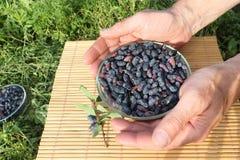 Banksj jagody w szklanym talerzu w męskich palmach Zdjęcia Stock