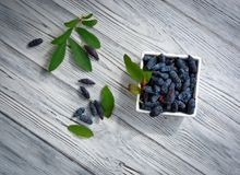 banksja Wyśmienicie jagoda zdrowe jedzenie Obrazy Royalty Free