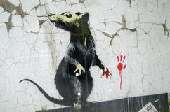 Banksy Graffiti Rat Royalty Free Stock Image