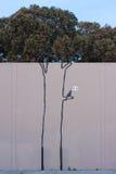 Banksy's graffiti Stock Image