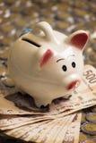 Bankwezenspaarvarken met contant geld en muntstukken Stock Foto's