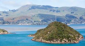 Banlieues de ville de Dunedin photo stock
