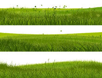 Banner of abstract meadow grass. Stock Photos