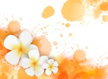 Background with watercolor splashes and tropical flowers. Banner with abstract watercolor splashes and tropical frangipani flowers. Travel concept background stock illustration