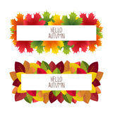 Banner advertising and autumn colored leaves Royalty Free Stock Photo