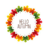 Banner advertising and autumn colored maple Stock Photography