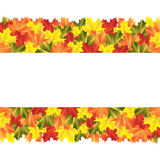 Banner with autumn maple leaves stock illustration