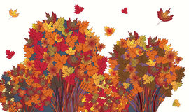 Banner with autumn maple trees Stock Images