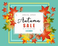 Banner for Autumn sale with fall leaves. Banner for Autumn sale with colorful seasonal fall leaves and acorns for shopping discount promotion stock illustration