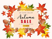 Banner for Autumn sale with fall leaves. Banner for Autumn sale with colorful seasonal fall leaves, rowan and acorns for shopping discount promotion royalty free illustration