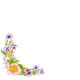 Banner of beautiful wildflowers Stock Image