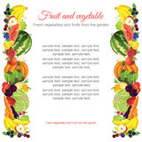 Banner or card with frame of vegetable. With text Royalty Free Stock Image