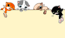 Banner with cats. Banner with little cats. Place for text. vector illustration