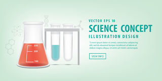 Banner Chemical conical flask and test tube vector.  Royalty Free Stock Photo