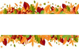 Banner of colorful autumn leaves and berries. Vector stock photos