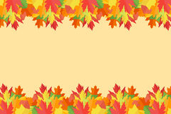 Banner with colorful autumn leaves on yellow background. Vector illustration Stock Illustration