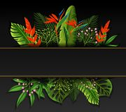 Banner design with bird of paradise flowers Stock Image