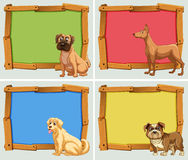 Banner design with pet dogs Stock Image