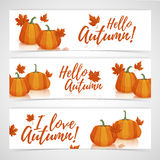 Banner design template Hello autumn. Set of designs horizontal banners with the decor of pumpkins and autumn leaves Stock Photo