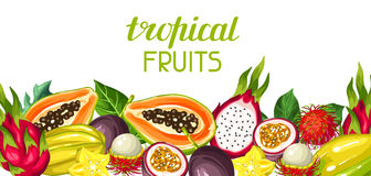 Banner with exotic tropical fruits. Illustration of asian plants Royalty Free Stock Photography
