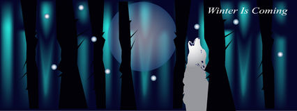 Banner for facebook cover with night forest wolf and moon Stock Images