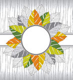 Banner of fancy leaves Royalty Free Stock Photo