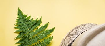 Banner of fern branch and some beach stuff on yellow. Summer flat lay of a fern branch and some beach stuff on yellow paper background stock photography