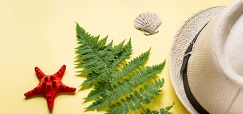 Banner of fern branch and some beach stuff on yellow. Summer flat lay of a fern branch and some beach stuff on yellow paper background stock photo