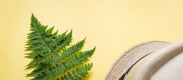 Banner of fern branch and some beach stuff on yellow. Summer flat lay of a fern branch and some beach stuff on yellow paper background stock images