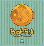 Banner fish. Banner on the background of the fish Royalty Free Stock Photography