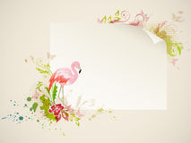 Banner with flamingo Royalty Free Stock Photo