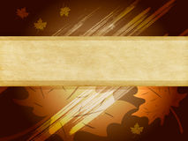 Banner on floral background Royalty Free Stock Photos