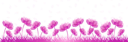 Banner with flowers Royalty Free Stock Images