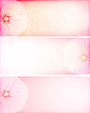 Banner with flowers Stock Photography