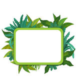 Banner - frame - border - jungle safari theme - illustration for the children. The happy and colorful illustration for the children Stock Photography