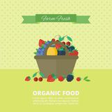 Banner with fresh berries and fruits. Concept organic food. Banner with different fresh berries and fruits in basket. Concept organic healthy food. Vector vector illustration