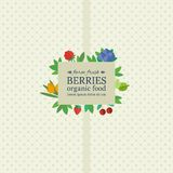 Banner with fresh berries and fruits. Concept organic food Royalty Free Stock Photos