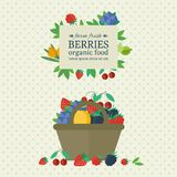Banner with fresh berries and fruits. Concept organic food. Illustration with different fresh berries in basket. Concept organic farm fresh product. Vector royalty free illustration