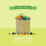 Banner with fresh berries and fruits. Concept organic food. Vector illustration. Banner with different fresh berries in package. Concept organic food vector illustration